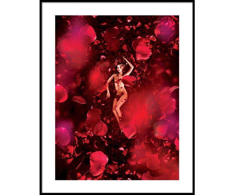 Plakat Róża 30x40 cm